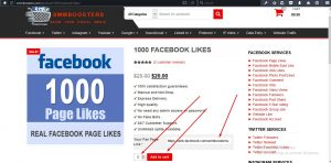 Reliable SMM Services : SMM Boosters