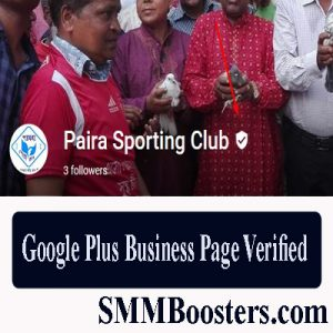 Google Plus Business Page Verified